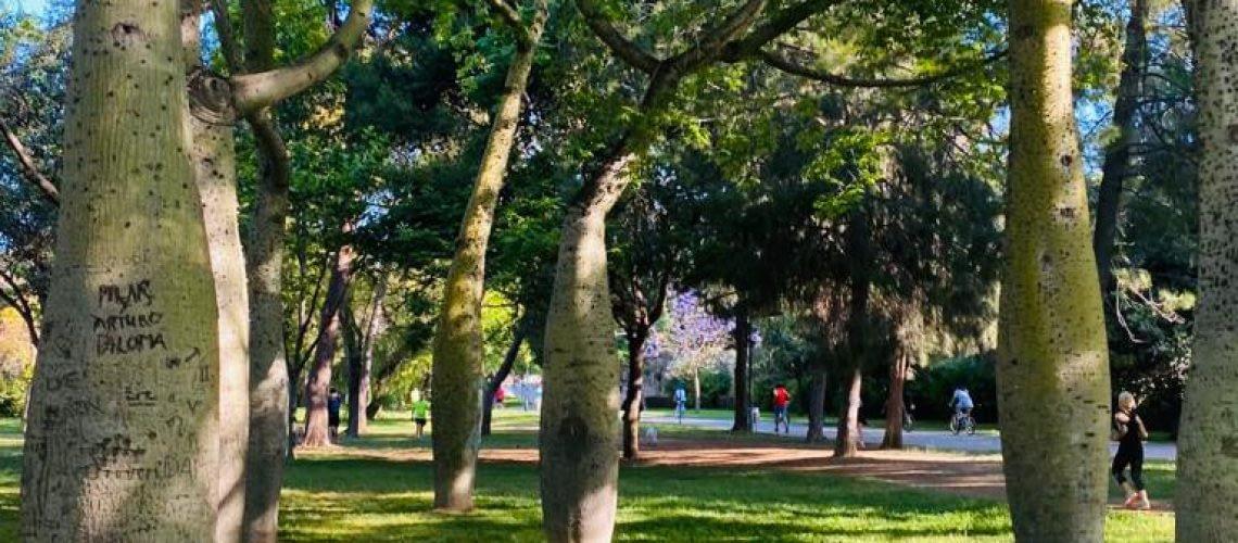 Parken Valencia